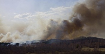 Forest fire in South Ural, Russia.